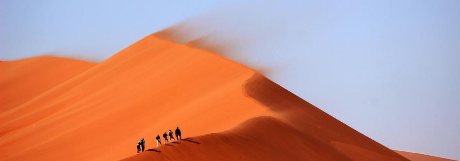 Woestijn India