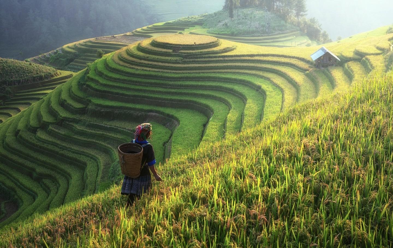 Sapa Noord-Vietnam