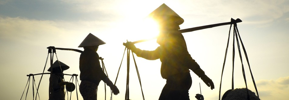 Werkende Vietnamezen